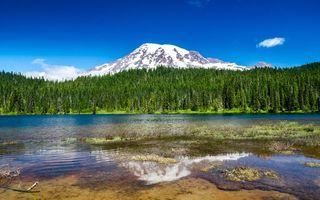 Бесплатные фото гора,лес,елки,река,берег,небо,пейзажи