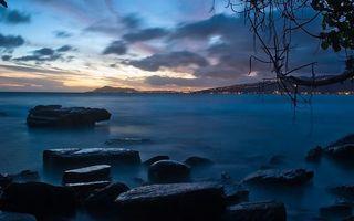 Фото бесплатно ветки, облака, горизонт