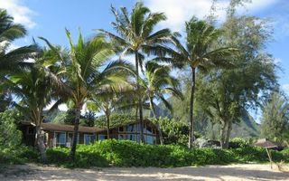 Фото бесплатно ветки, берег, деревья