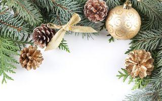 Фото бесплатно шар, шишка, елка, ветка, бантик, венок, рождественский, новогодний, новый год, настроения, праздники