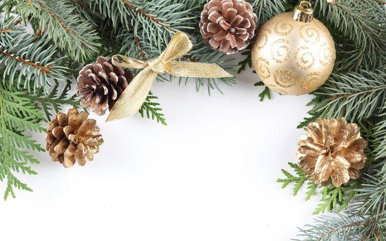 Фото бесплатно шар, шишка, елка