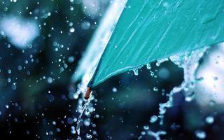 Фото бесплатно зонтик, зеленый, дождь