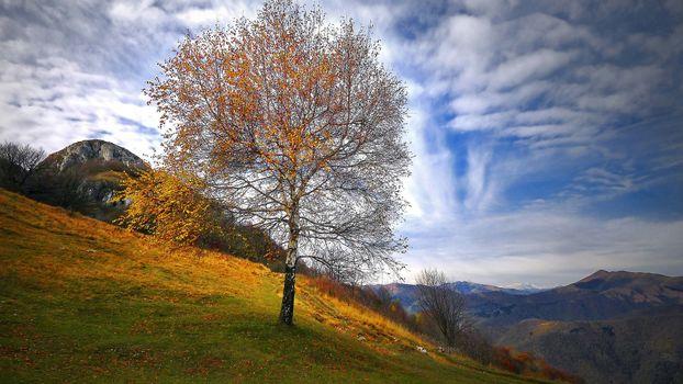 Фото бесплатно Альпы, Вальброна, Италия