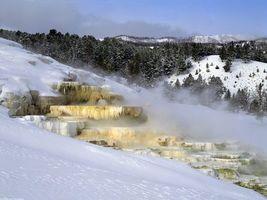 Фото бесплатно камни, лес, снег