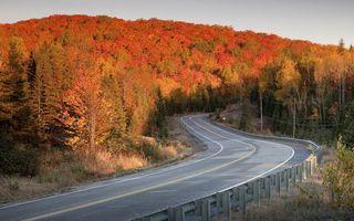Бесплатные фото горы,холм,деревья,листья,осень,дорога,трасса