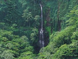 Фото бесплатно высокий, водопад, природа