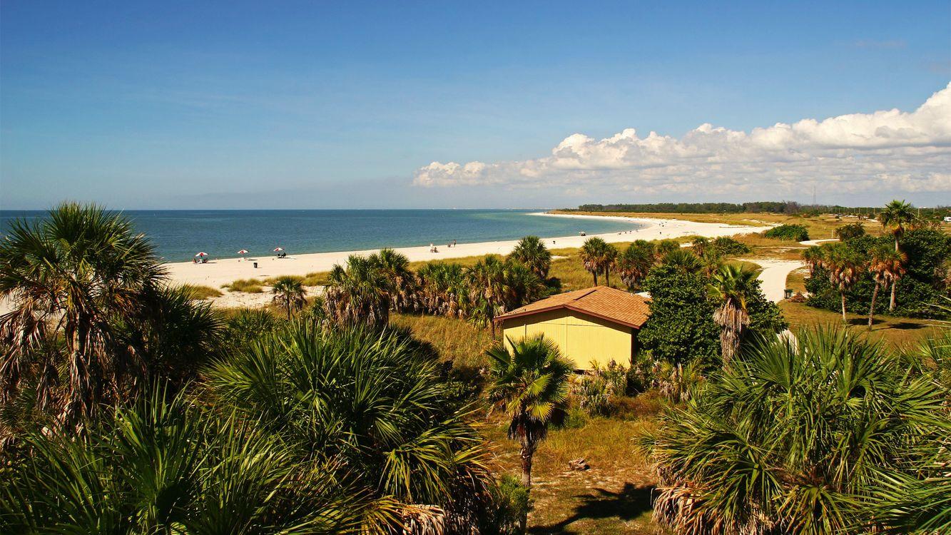 Фото бесплатно море, пальмы, песок - на рабочий стол
