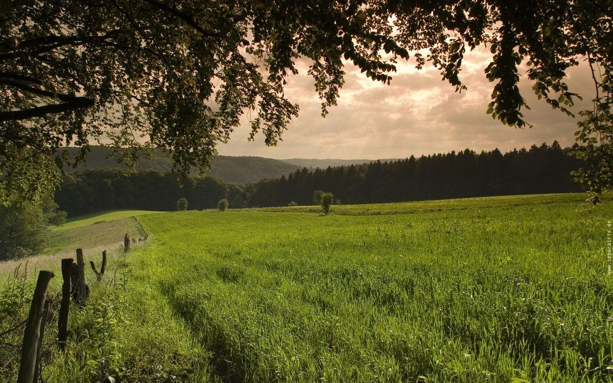 Фото бесплатно холмы, зеленый, природа - на рабочий стол