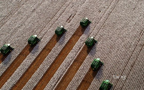 Photo free field, harvest, harvester
