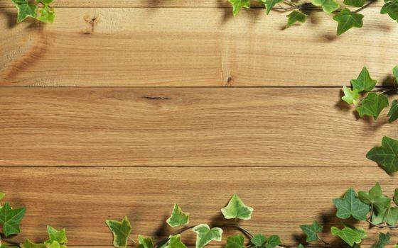 Фото бесплатно стена, дерево, доски