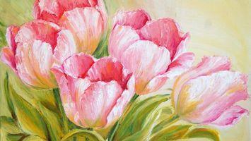 Фото бесплатно тюльпаны, лепестки, картина