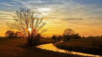 Бесплатные фото закат,деревья,солнце,ручей,вода