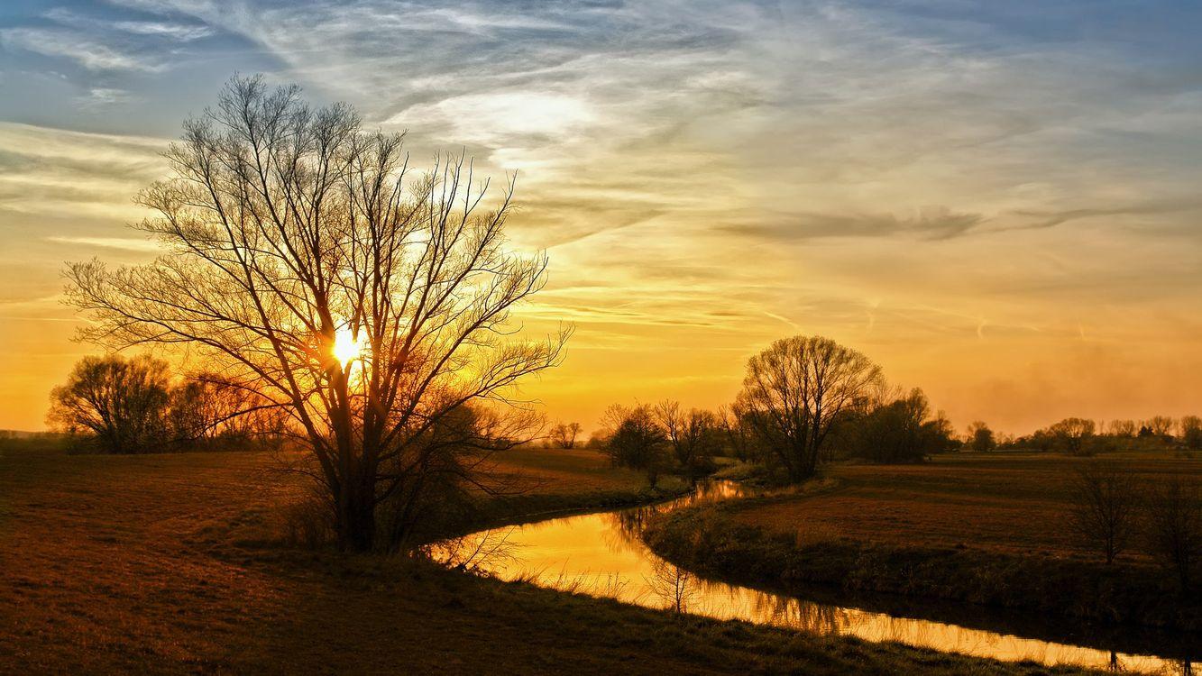 Фото бесплатно закат, деревья, солнце, ручей, вода, разное