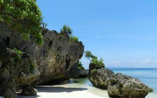 Бесплатные фото берег,море,камни,песок,растительность,зеленая,природа