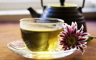 Заставки чашка,заварник,чай,листья,цветок,чайник,тарелка
