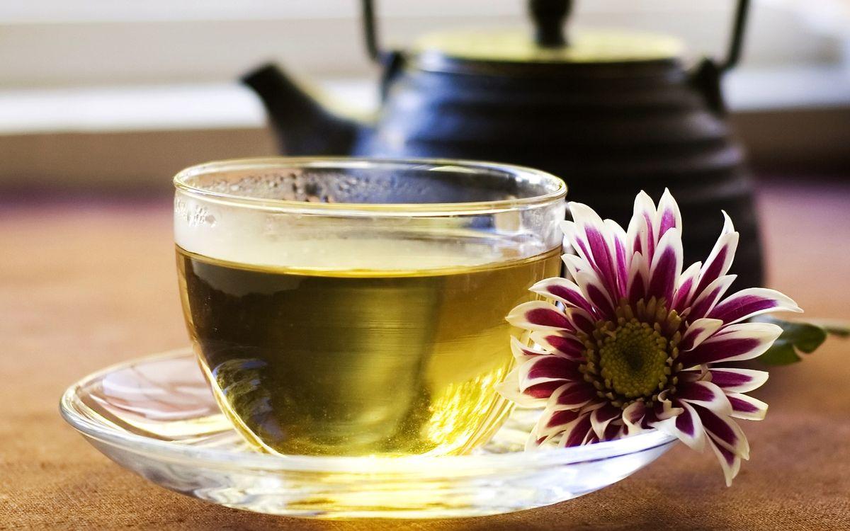 Фото бесплатно чашка, заварник, чай, листья, цветок, чайник, тарелка, напитки, напитки
