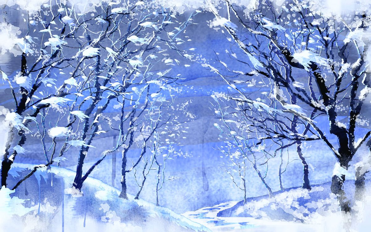 Фото бесплатно холод, природа, иней - на рабочий стол