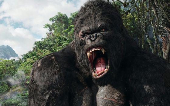 Photo free King Kong, mouth, fangs