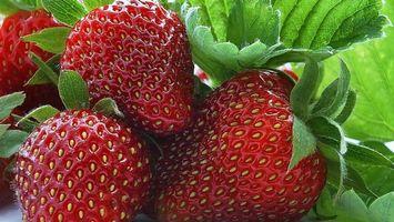 Заставки клубника,крупным,планом,ягода,еда