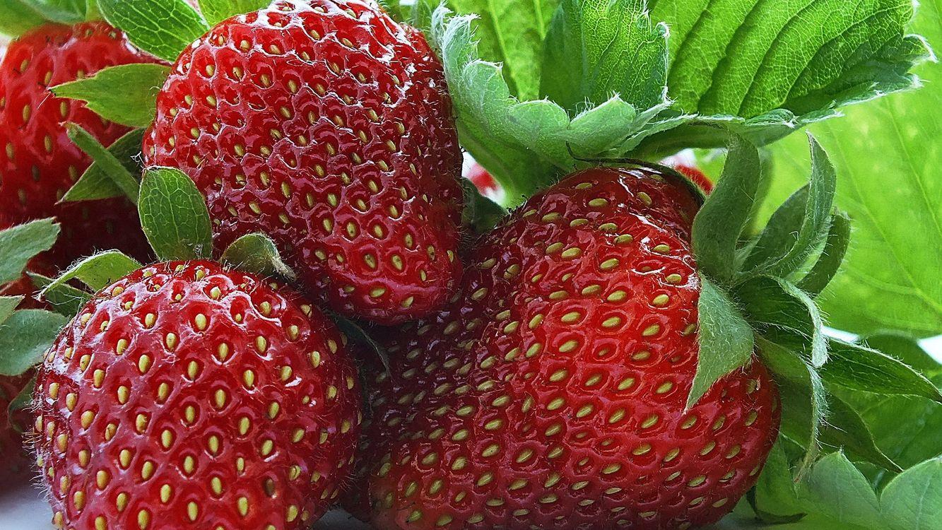 Фото бесплатно клубника, крупным, планом, ягода, еда, еда
