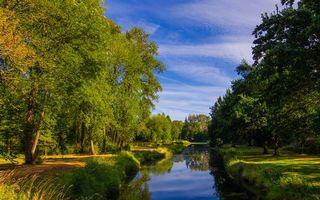 Фото бесплатно река, трава, деревья