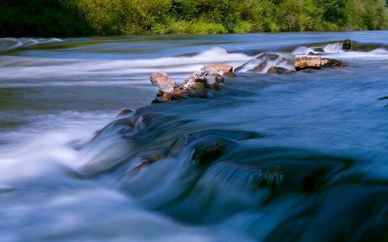 Фото бесплатно вода, брызги, камни, берег, лес, деревья, капли, поток, скорость, природа, пейзажи