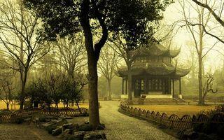 Бесплатные фото японський сад,дерева,осінь,пагода,лисття,пейзажи,природа
