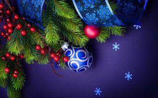Бесплатные фото праздник,украшения,ягоды,игрушка,ель,ветка,лента