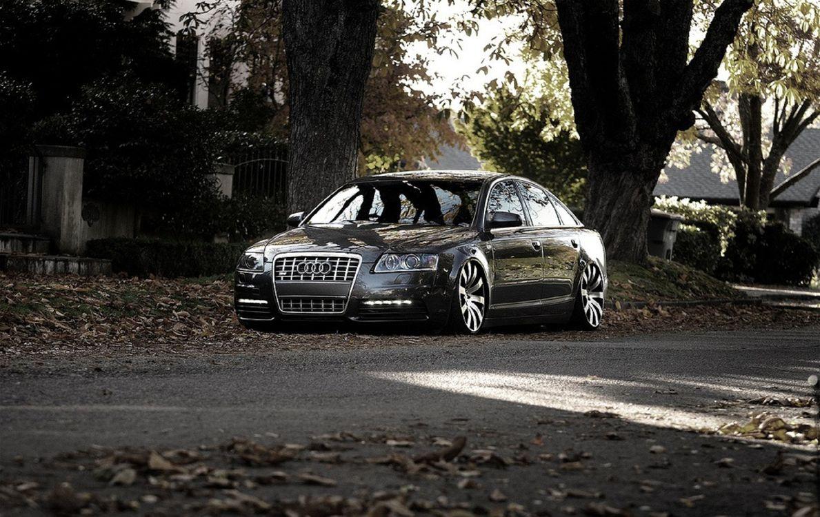 Фото бесплатно audi, черный, автомобиль, припаркован, у дома, осень, листопад, черно-белое, фото, машины, природа, природа