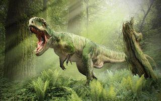 Бесплатные фото динозавр,лапы,когти,зубы,пасть,язык,трава