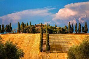 Бесплатные фото поле,урожай,небо,облака,дом,здание,деревня