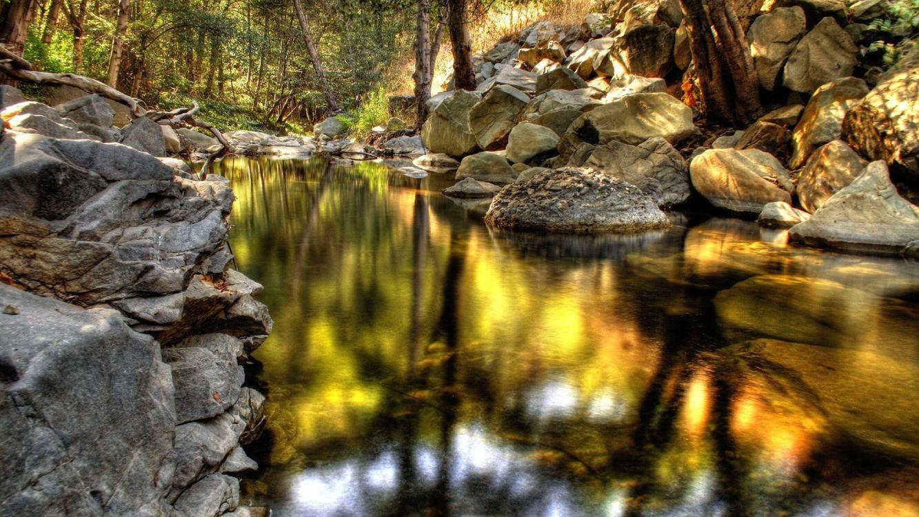 Фото бесплатно река, вода, камни, лес, деревья, свет, природа, природа