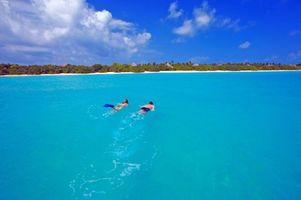 Фото бесплатно пляж, дайвинг, тропики