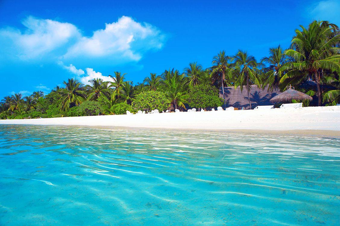 Бесплатно море, тропики - фото красивые