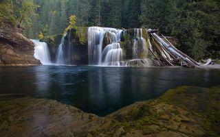 Бесплатные фото водопад,вода,брызги,лес,деревья,трава,ветки