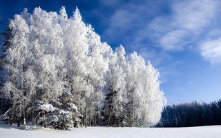 Заставки зима, мороз, пейзажи