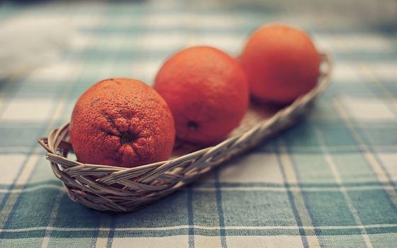 Photo free orange, table, tablecloth