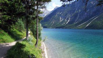 Бесплатные фото деревья,лес,берег,пляж,вода,волны,горы