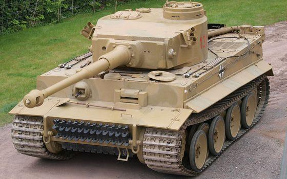 Фото бесплатно белый тигр, танк, война