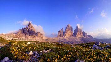Бесплатные фото камни,трава,цветы,желтые,горы,скалы,облака