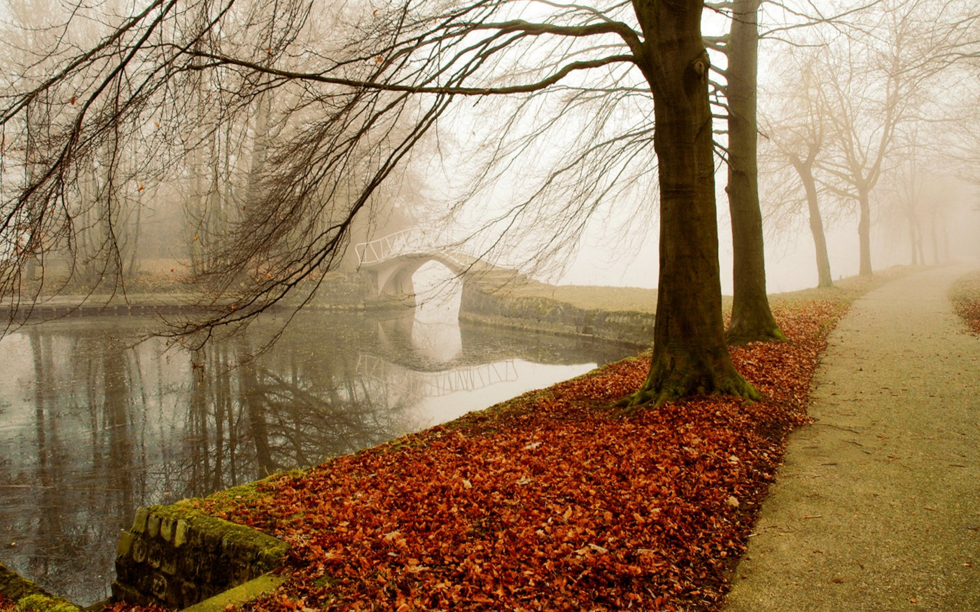 осень, парк, аллея
