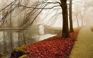 Бесплатные фото осень, парк, аллея, река, мостик, деревья, листва
