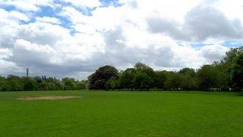 Бесплатные фото трава,деревья,зеленые,небо,голубое,облака,природа