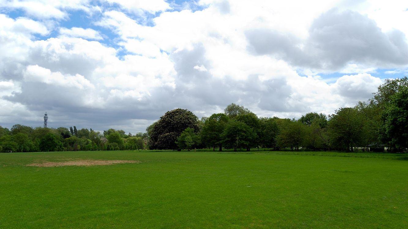 Фото бесплатно трава, деревья, зеленые, небо, голубое, облака, природа - на рабочий стол