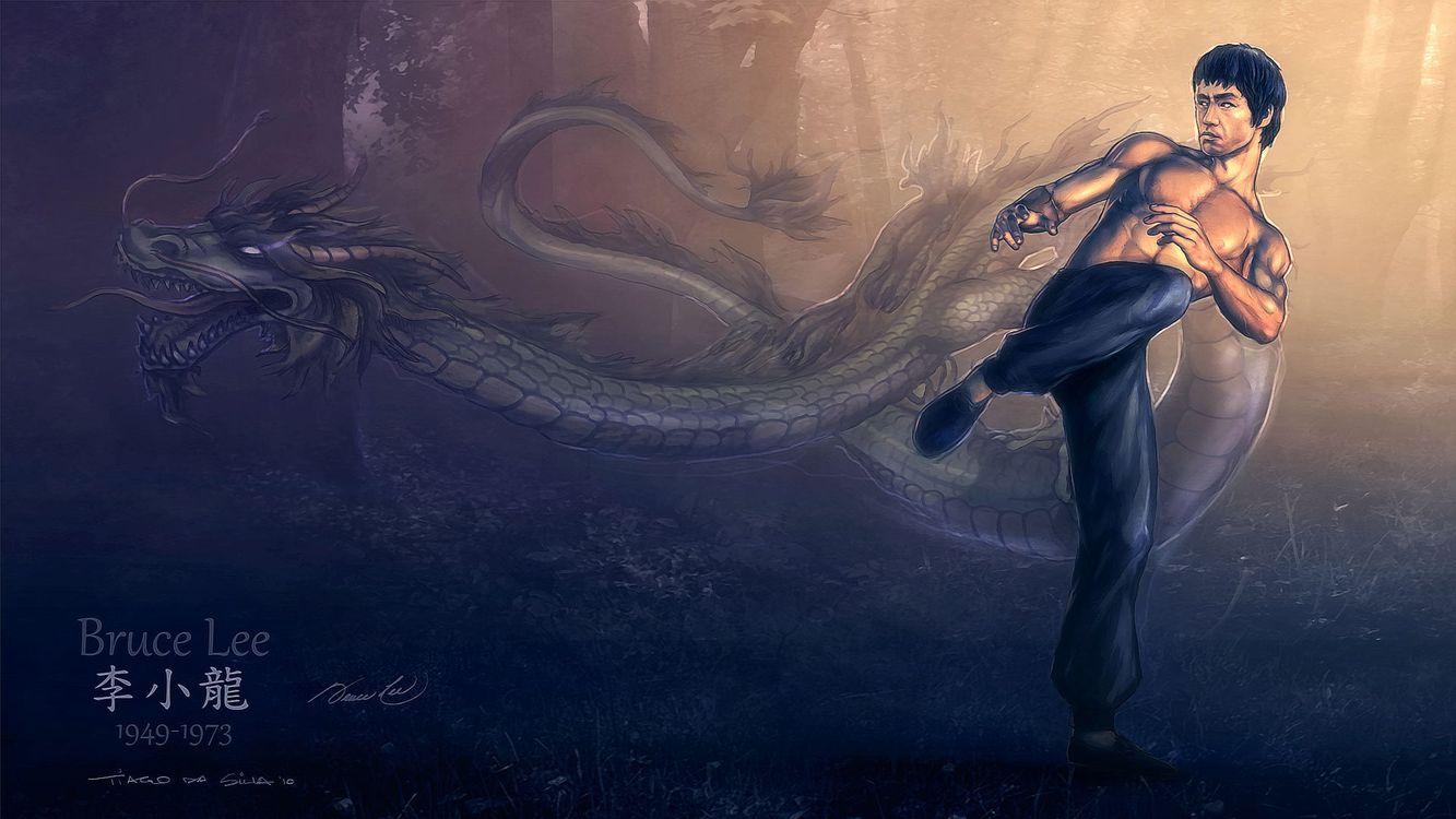 Фото бесплатно bruce lee, рисунок, дракон - на рабочий стол