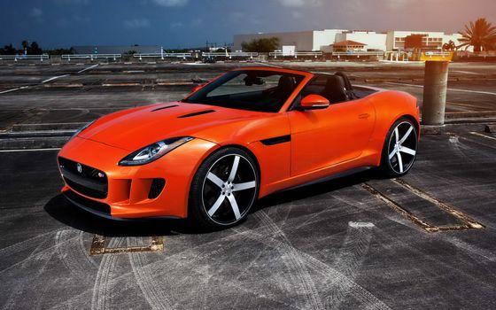 Фото бесплатно jaguar, оранжевый, тюнинг