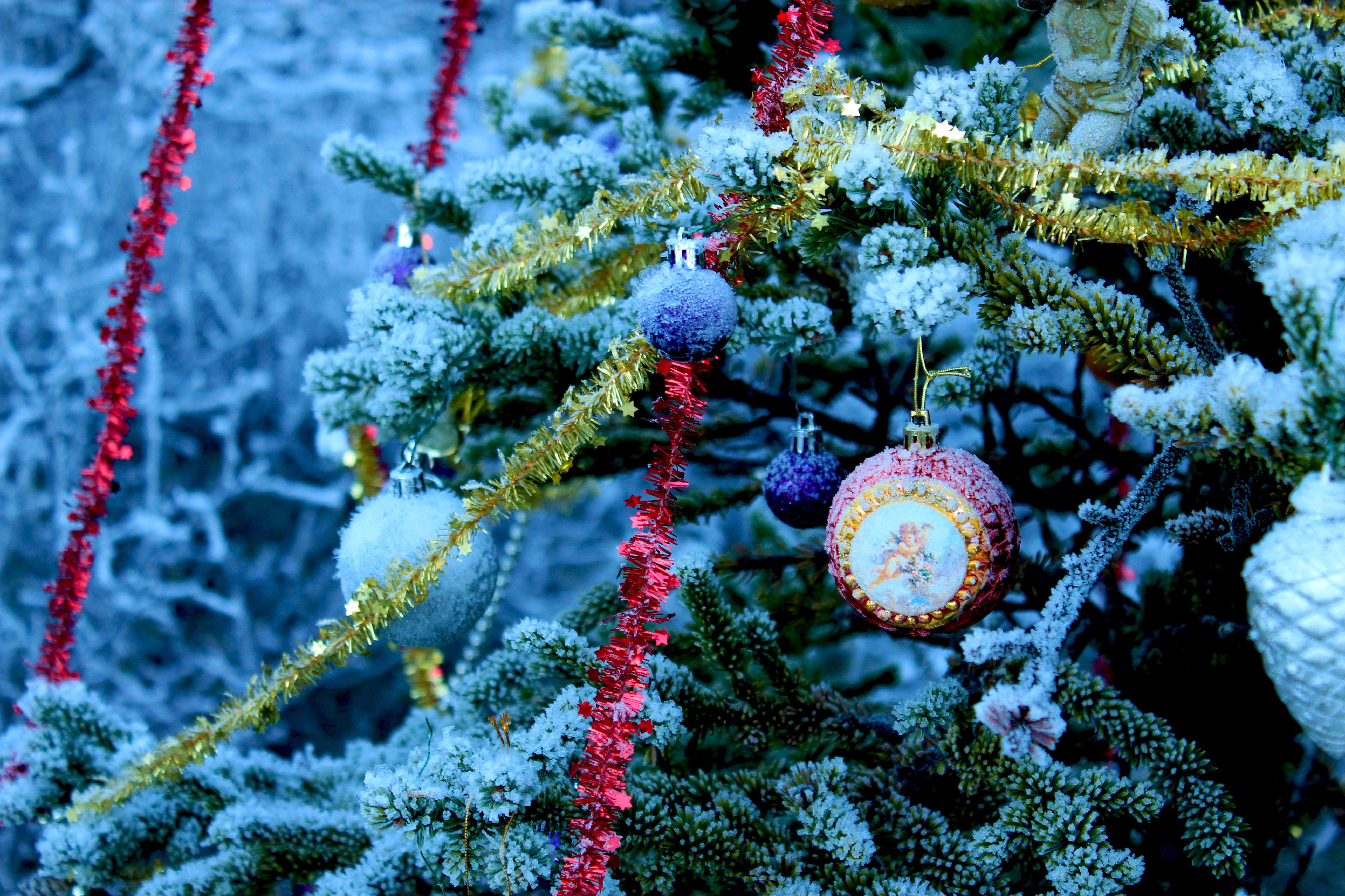 Обои новый год, с новым годом, новогодние обои, елка