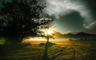 Бесплатные фото рассвет,солнце,лучи,холмы,трава,туман,дерево
