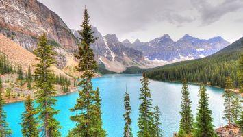 Бесплатные фото река,вода,лес,деревья,горы,небо,природа