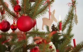 Бесплатные фото праздник, happy new year, новогодние обои, christmas color, новый год